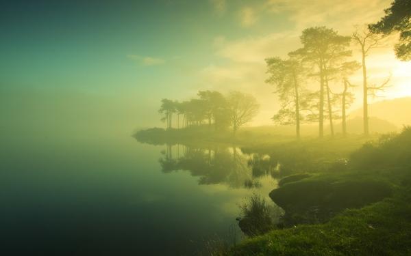 calm environment